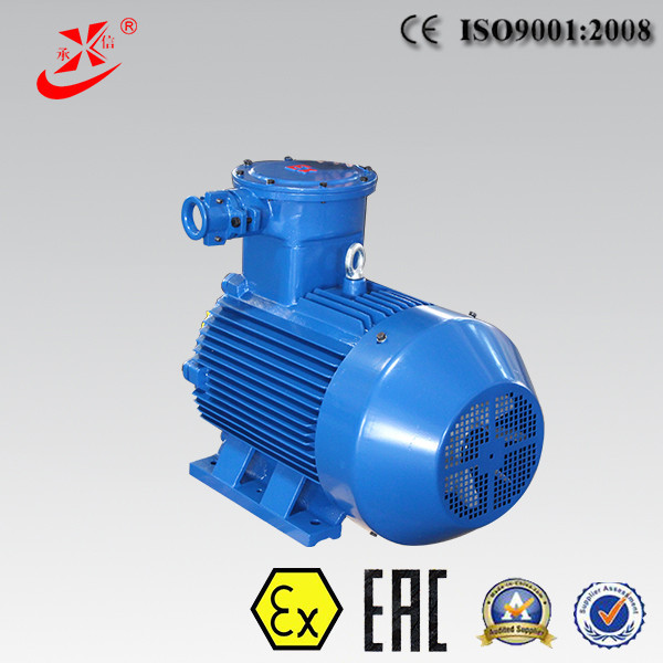 Electric Motor For Natural Gas and Petroleum Chemical Industry