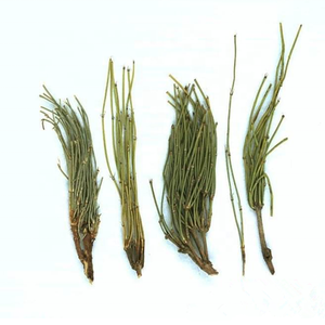 Chinese Ma Huang herbs Stem Raw Herb Ephedra sinica stem for Wholesales