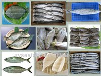 fresh frozen seafood for sale with cheap price and best quality