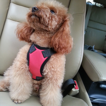 Adjustable ecofriendly wholesale custom logo comfort soft nylon padded pet chest strap car seat safety small dog harness