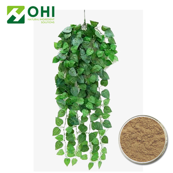 New Brand 2018 Organic Healthy Natural Material Hedera Helix Ivy Leaf Stem  Extract - Buy Hedera Helix Ivy Leaf Stem Extract,Hedera Helix Ivy Leaf Stem