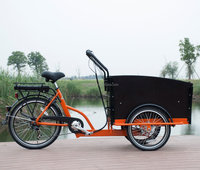 Adult transportation three wheels electric bisikle 36V family electric cargo tricycle bike/cargobike/bakfiets UB9031E