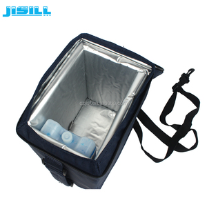 Customize Smart insulated cooler bag for medicine transport