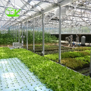 commercial used hydroponic growing systems greenhouse with cooling fan