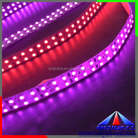 Pink 3528 Led Strip with 240leds/m,High Lumen Ultra Bright DC24V SMD 3528 480 Led