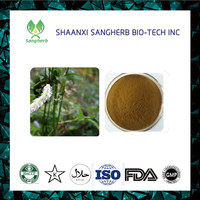 Free sample 100% pure natural Black Cohosh Extract