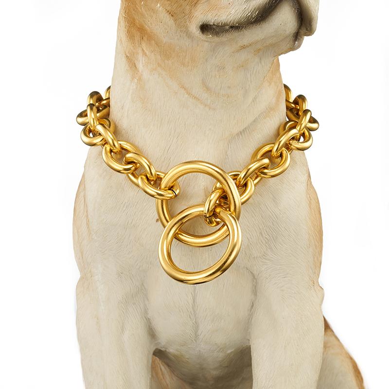 картинки цепь для собаки администрации