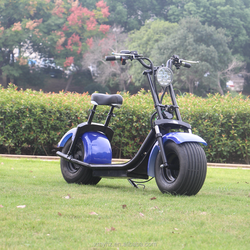 Fashion dropshipping 2 big wheels electric scooter