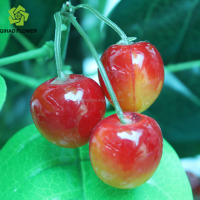 Guangzhou artificial fruit wholesale,fake plastic fruit cherries supplier