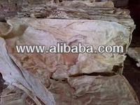 Raw Wet Salted Cow Hides