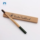 Ecofriendly Bottom Sprayed Colors Bamboo Charcoal Toothbrush Round Handle and Soft Bristles