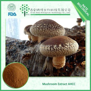 AMAZING OFFER ahcc mushroom powder extract golden suppliers