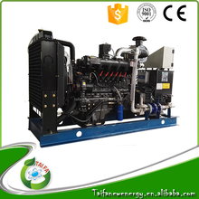 gas small power 20kw biogas generator set