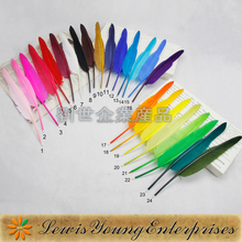 Colorful feather pen for wedding guest wrinting