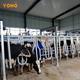 YOMO dairy farm equipment automatic cow milking machine Parallel milking system