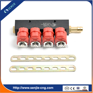 CNG LPG fuel kit injector for conversion kit