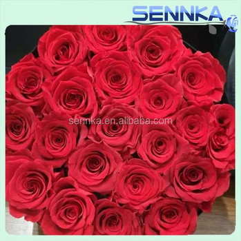 Wholesale Dried Flowers Natural Processing Preserved Roses Decor ...