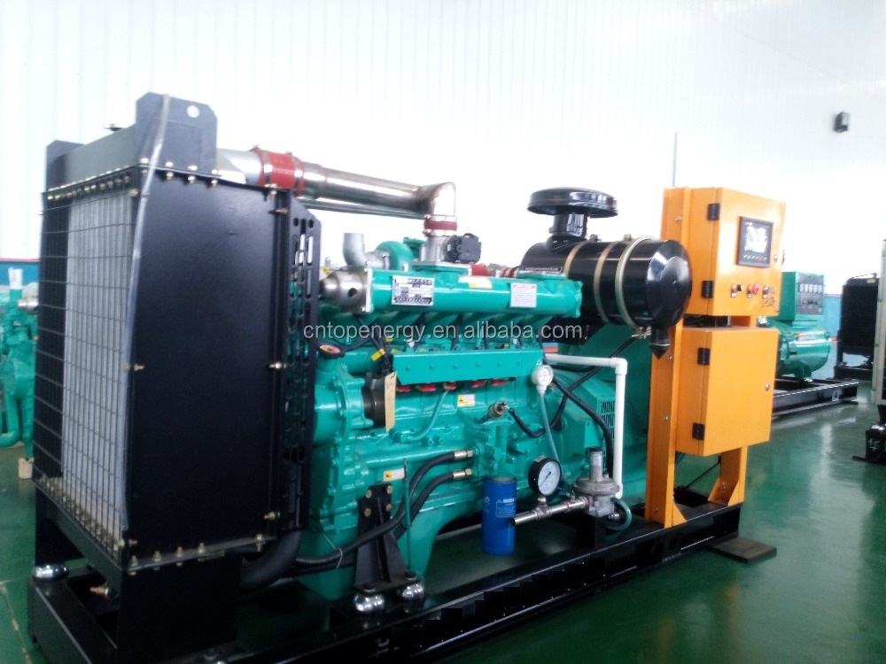 Biogas and Natural Gas Generator Set 25kw 50kw 100kw