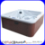 Acrylic Balboa 5 Person Outdoor Spa Pool