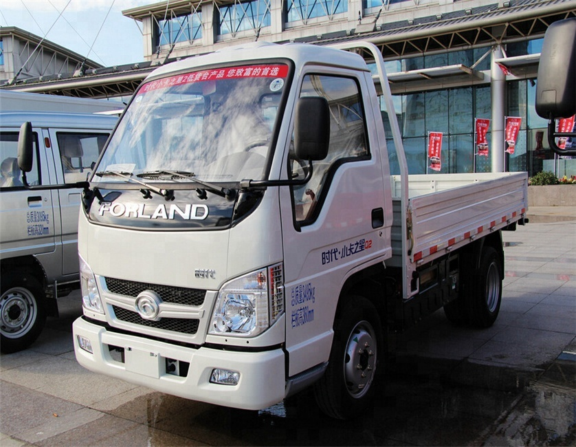 FOTON Forland CNG cargo truck for sale 008615826750255 (Whatsapp)