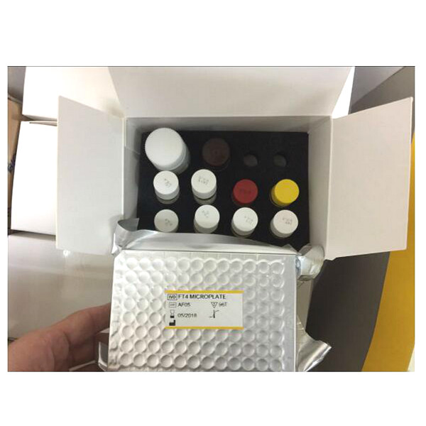 Research Use Human Leptin R Elisa Reagents /Thyroid Elisa Kits Series T3, T4, FT3, FT4