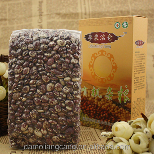 Factory Red Speckled Kidney Beans Supplier Of Kideny Beans
