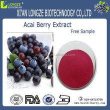 Acai berry extracto 5:1, 10:1, 20: 1
