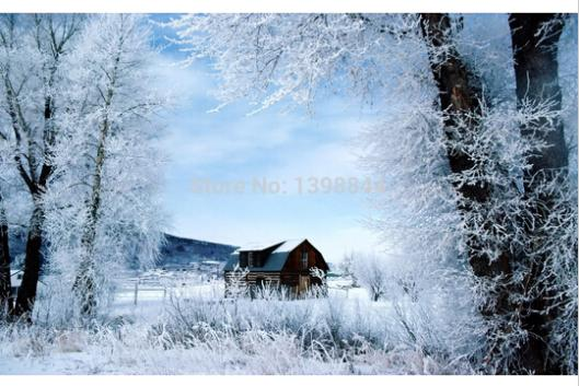 Free Shipping Classical Wallpaper Custom Home Decor Poster Nice Winter Day PSV WallSticker Free Shippingr#0571