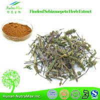 NutraMax Supply-Schizonepeta Tenuifolia P.E., Pure Schizonepeta Tenuifolia P.E., Natural Schizonepeta Tenuifolia P.E.