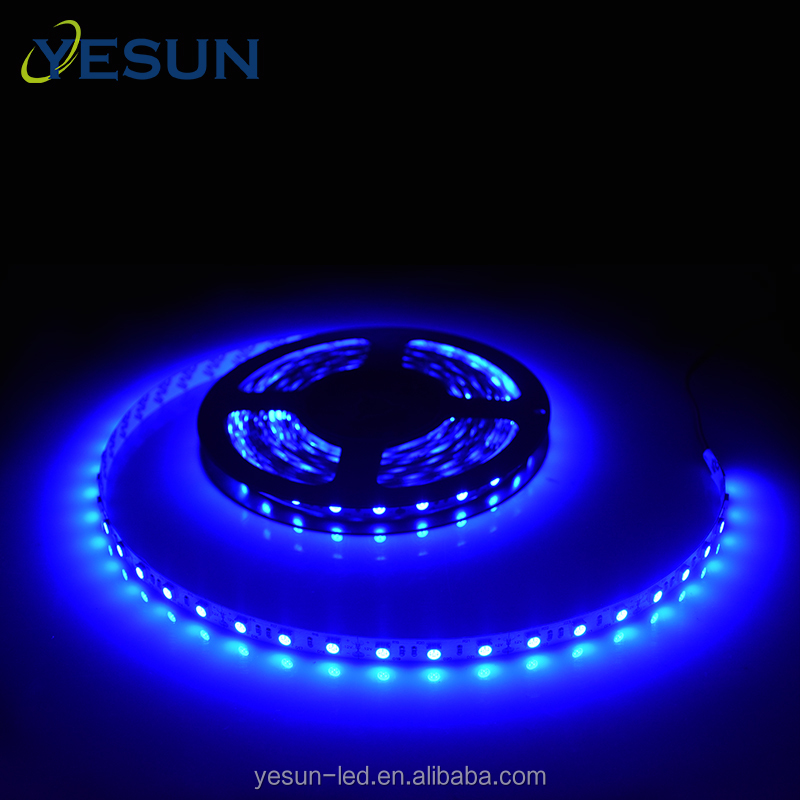 China professional manufacturer Blue color 12v DC smd5050 led flexible strip light for indoor decoration