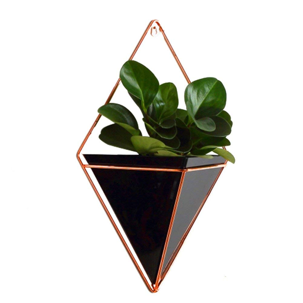SHZONS Hanging Wall Planter, Geometric Hanging Planter Pot for Indoor Wall Decor,Planter For Succulent Plants,Air Plant,Cacti,Faux/Artificial Plants