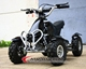 Cheap China Super 500watt Electric Atv