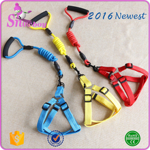 Newest Colorful Nylon Pet Dog Leash with Foam Handle, Dog Harness Sets