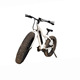26*4.0 1000W powerful Fat tire electric Mountain bike/Snow bike/electric bicycle with CE