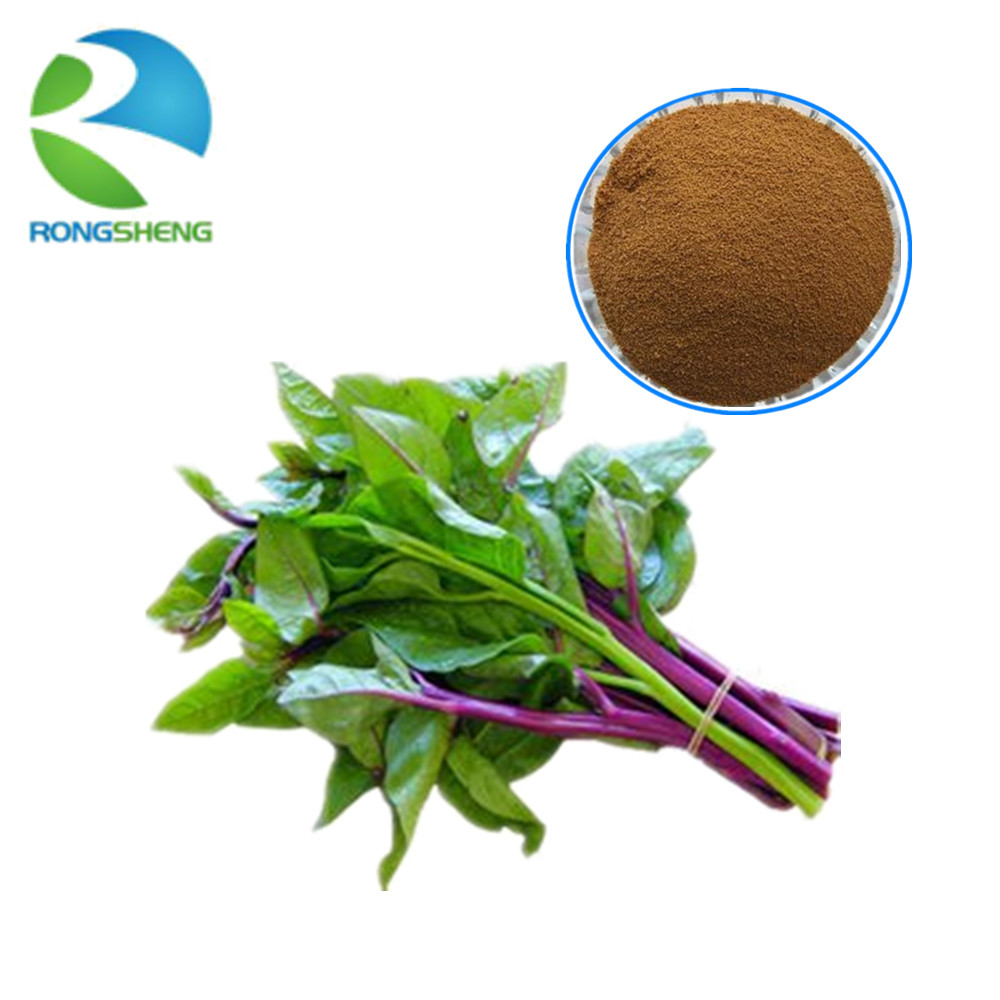 high quality pure natural Red Spinach Extract
