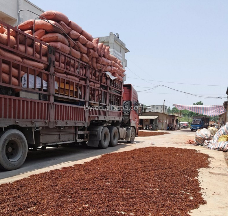No sulfur fumigation 2016 new crop export quality star aniseed