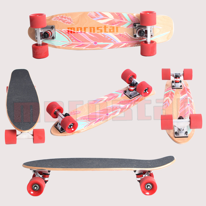 22 Inch Mini Cruiser Skateboard Canadian Maple Wood Skate Board for Adult Youth Kids