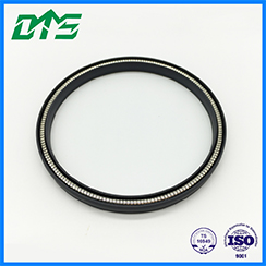 product-DMS Seal Manufacturer-img