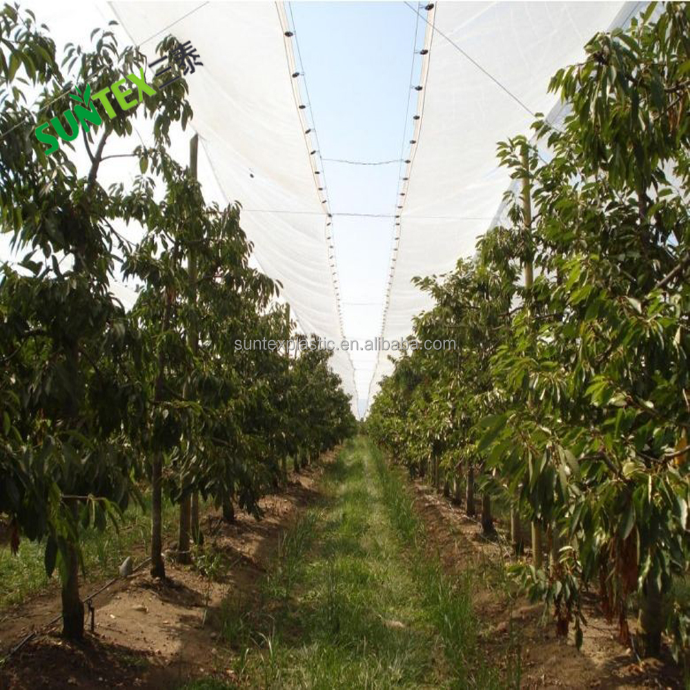 120gsm transparent UV plastic woven film,reinforced HDPE rains proof cover woven film,cherry cover poly woven greenhouse film