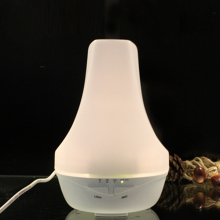 Supplier Manufacture Beauty Care Product Aroma Diffuser with 100ml Water Replenishing for Skin
