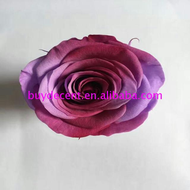 Wholesale cheap paper big rainbow rose real dry Christmas Day flowers With Good Services