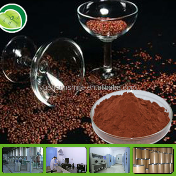 High Quality Grape Seed Extract (Polyphenols 40%-95%, Proanthocyanidins 95%)