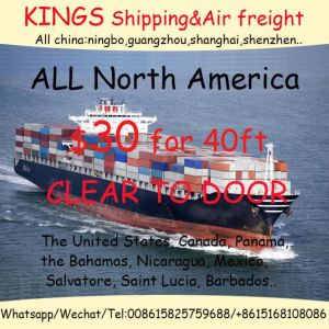 Shipping Cargo Service Broker Containers For Sale Shipping agent Contianer Cheap Competitive Transportation Freight