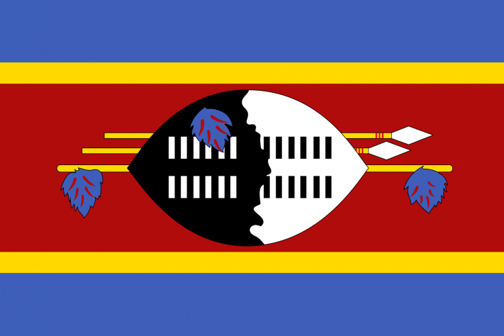 swaziland national flag new 3x5ft indooroutdoor national flag banner 1146 free shipping - Flag Design Ideas