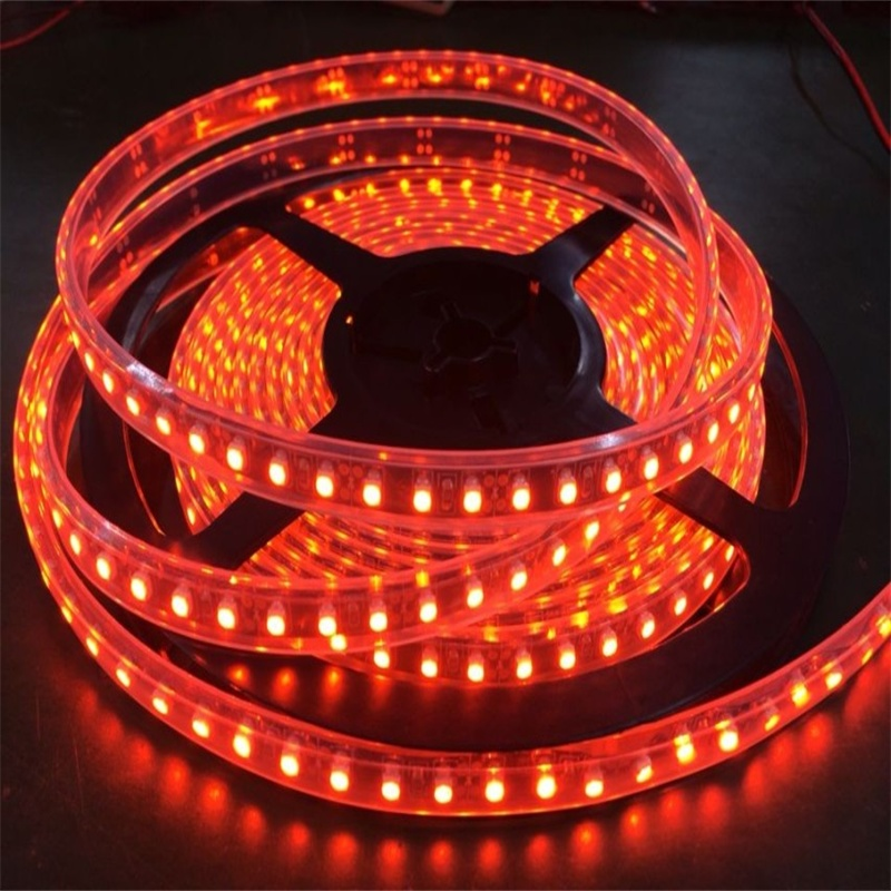 Low Price High efficiency for Room and Alluminun Profile DC12V/24V 12w/m Outdoor led strip Light