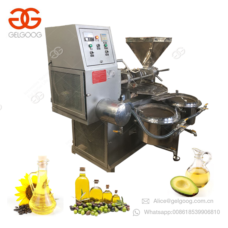 Gelgoog Cold Pressed Coconut Peanut Oil Extraction Walnut Oil Press Making Almond Sunflower Bean Oil Pressing Machine Price