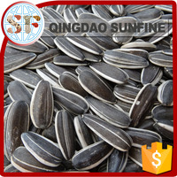 Chinese sunflower seeds