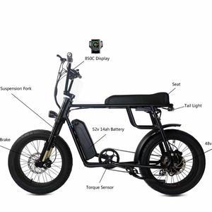 2019 Most Popular 48V 1000W Mac Hub Drive Motor Electric Bicycle/Electric Bike