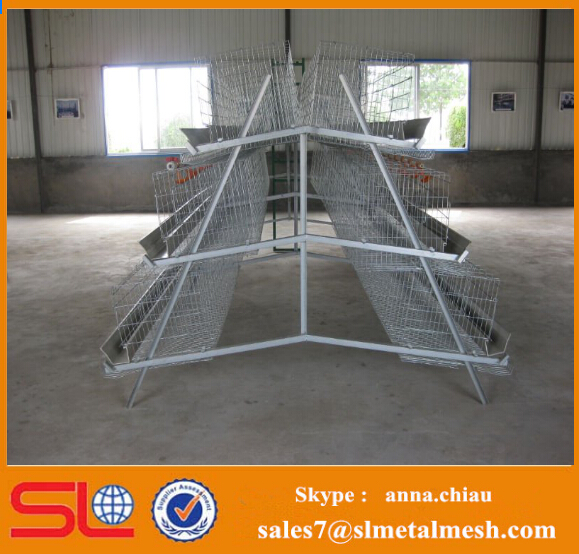 Automatic Chicken Egg Layer Cage for sale in philippines