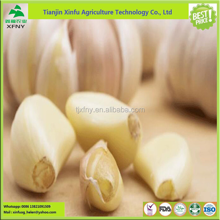 2017 hot sale ! manufacture to malaysia sterilization garlic